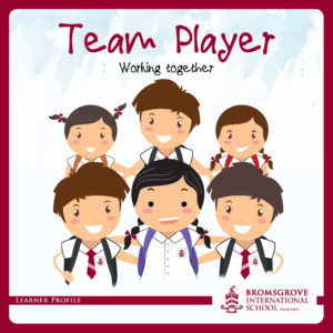 You are a TEAM-PLAYER